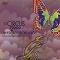 Circus 2000 - An Escape From A Box (Fuga Dall'Involucro)