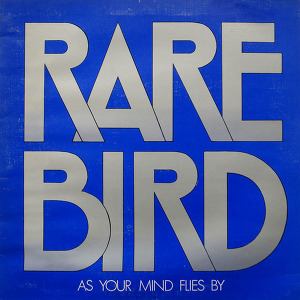Rare Bird As Your Mind Flies By