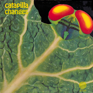 Catapilla Changes