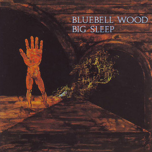 Big Sleep Bluebell Wood