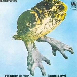 Brainchild Healing Of The Lunatic Owl